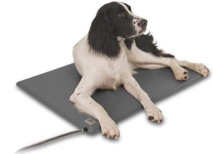 Outdoor Heated Dog Pad