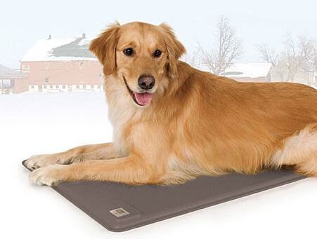 heated pad for dog house